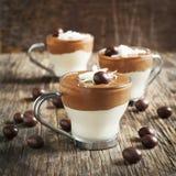 Rato do chocolate com chocolate escuro e branco Foto de Stock