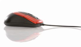 Rato do computador Foto de Stock