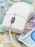 Rato do computador no dinheiro imagem de stock royalty free