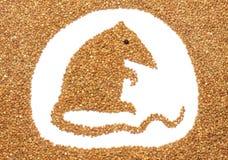 Rato do trigo mourisco Fotos de Stock