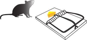 Rato e armadilha do rato com queijo Fotografia de Stock