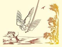 Rato e falcão Fotografia de Stock Royalty Free