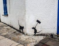 Rato e gato Imagens de Stock