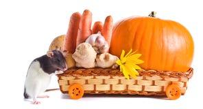 Rato e vegetais Fotografia de Stock Royalty Free