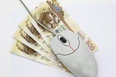 Rato no dinheiro Imagem de Stock