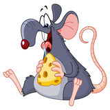 Rato que come o queijo Fotos de Stock Royalty Free