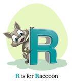 Raton laveur avec l'alphabet Images libres de droits