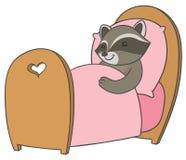 Raton laveur de bande dessinée dormant dans un lit confortable Photographie stock libre de droits