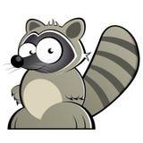 Raton laveur de dessin animé Photos libres de droits