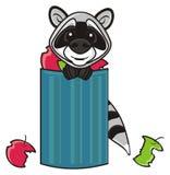 Raton laveur et poubelle Photographie stock