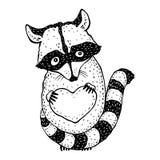 Raton laveur portant un coeur Images libres de droits
