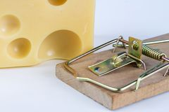 Ratonera en una tabla blanca Trampa con queso amarillo como cebo imagen de archivo