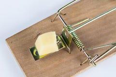 Ratonera en una tabla blanca Trampa con queso amarillo como cebo fotos de archivo libres de regalías