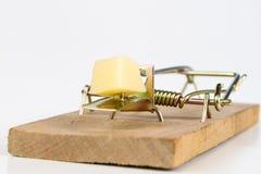 Ratonera en una tabla blanca Trampa con queso amarillo como cebo fotografía de archivo