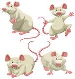 Ratones blancos stock de ilustración