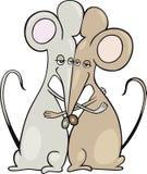 Ratones en un abrazo Fotografía de archivo libre de regalías
