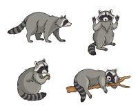 Ratons laveurs - illustration de vecteur illustration de vecteur