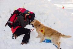 Ratownik i jego usługowy pies Fotografia Stock