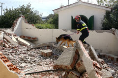 Ratownik z psem, Podczas ćwiczenia szkoleniowego Zdjęcia Stock