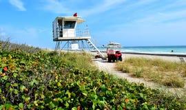 Ratownika stojak przy ocean plaży tłem obrazy stock