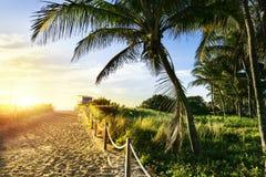 Ratownika wierza, Miami plaża, Floryda zdjęcia royalty free