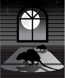 Rats in the Attic Royalty Free Stock Image