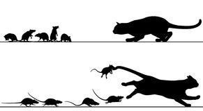 Rats chasing cat. Editable vector silhouettes of a cat stalking rats which then chase it with all elements as separate objects Royalty Free Stock Images