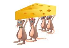 Rats Royalty Free Stock Image