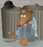 Rats at garbage tanks Royalty Free Stock Images
