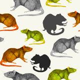 Rats seamless pattern. Grey, yellow and brown hand painted mice, profiles and silhouettes Royalty Free Stock Photos