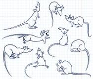 Rats set. Doodle rats characters set (poses Stock Illustration