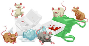 Rats in the trash pile Stock Images