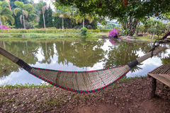 Rattan bamboo hammock hanging on tree Stock Image