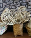 Rattan basket for long-handled fruit-picker. Handmade long-handled fruit-picker ready to attached with long bamboo or stick Stock Image