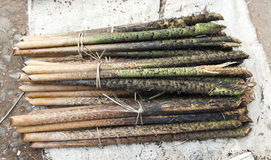 Rattan Palm Stalks at Market Stock Image