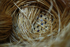 Rattan strips for make baskets, woven from willow twigs. typically made from interwoven strips of cane or wire. Baskets woven from willow twigs. typically made Royalty Free Stock Photos