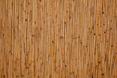 Free Rattan Texture Stock Photography - 20651112