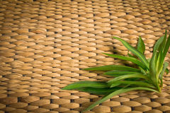 Rattan weave with plant. Background of rattan weave with plant Stock Photo