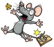 Ratte Stockbilder