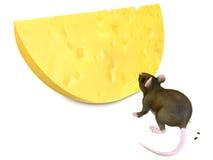 Maus und chese Stockbild