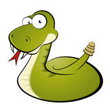 Rattle snake cartoon Stock Image