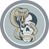 Rattle Snake Curling Around Skull Cartoon Stock Images