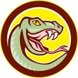 Rattle Snake Head Circle Cartoon Royalty Free Stock Photography