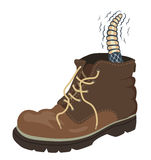 Rattler boot Stock Image