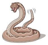 rattlesnake Stock Foto's
