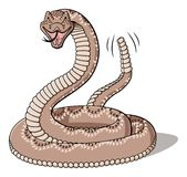 Rattlesnake Stock Photos