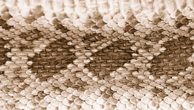 Rattlesnake Skin Leather 2 Stock Photography