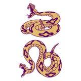 rattlesnakes illustration libre de droits
