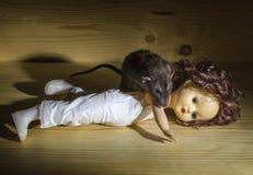 Ratto e una vecchia bambola Fotografia Stock Libera da Diritti