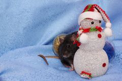 Ratto nero vicino ad un pupazzo di neve del giocattolo Nuovo anno felice Horoscope cinese anno di ratto 2020 immagini stock libere da diritti